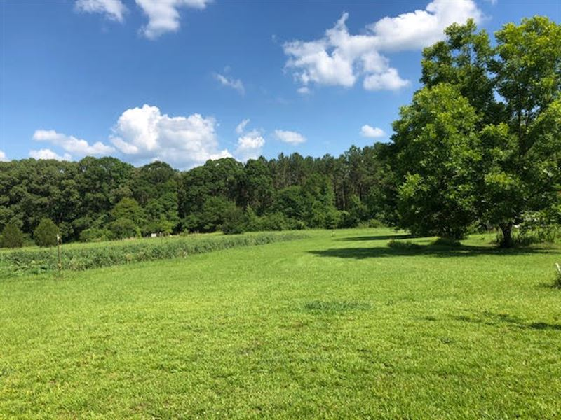 Beautiful Country Land : Farm for Sale : Woodville