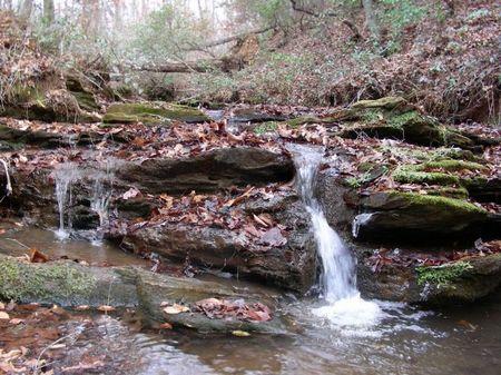Well Mountain Tract : Westminster : Oconee County : South Carolina