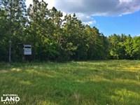 Lottie Hunting And Farm Tract : Lottie : Baldwin County : Alabama