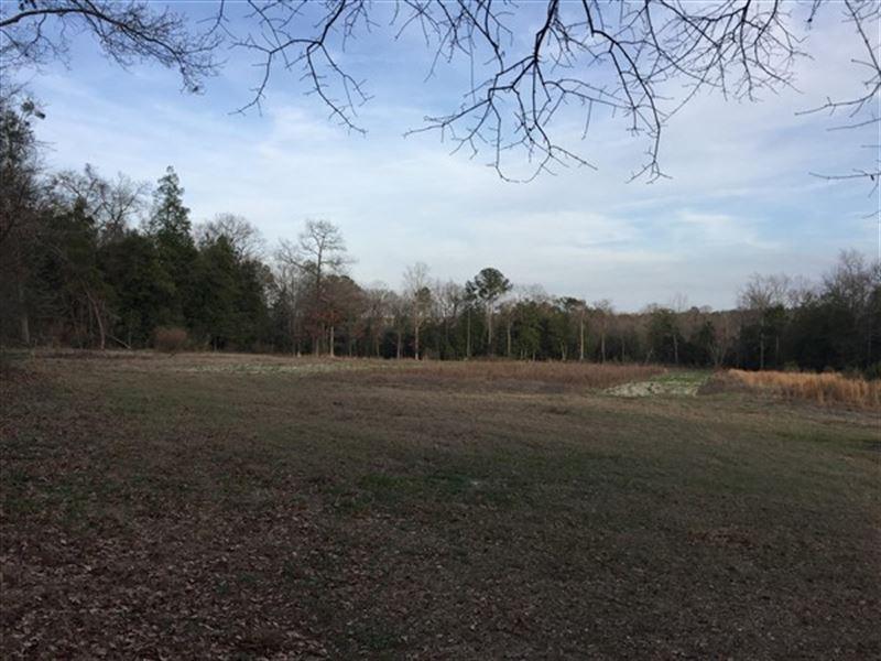 21.49 Acres, Lexington County, Sc : Batesburg : Lexington County : South Carolina
