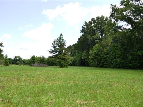 Collett Home-Site : Cecil : Montgomery County : Alabama