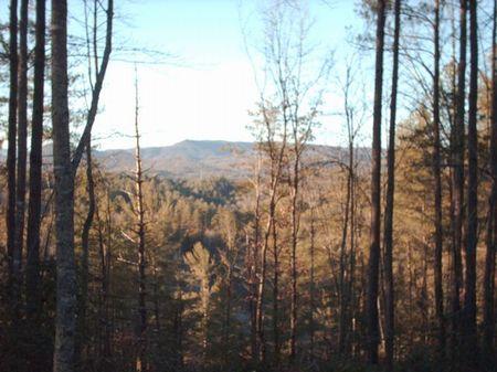 Eastatoee Mountain Tract : Pickens : Pickens County : South Carolina