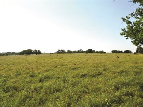 Absolute Land Auction : Wynnewood : Garvin County : Oklahoma