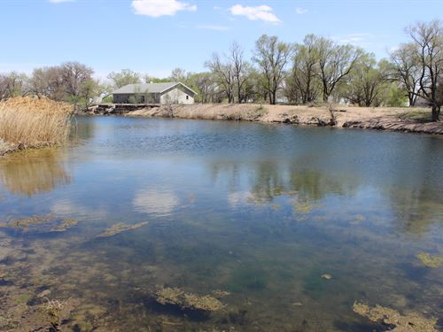 Lexington Waterfowl Property : Lexington : Dawson County : Nebraska
