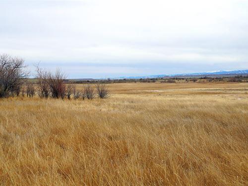 Bird's & Buck's : Pavillion : Fremont County : Wyoming
