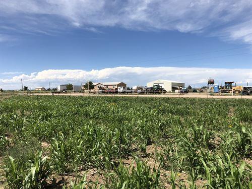 Cherry Road Farm : Boone : Pueblo County : Colorado