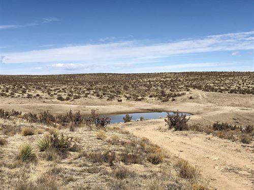 Tom Hollow Ranch At Pueblo : Pueblo : Colorado