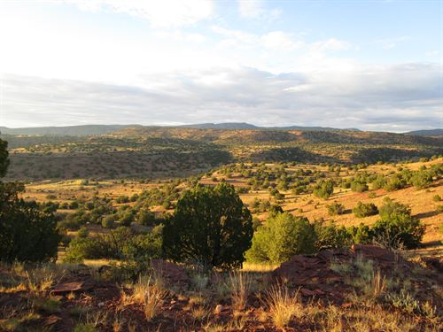 Thompson Ranch Land & Cattle : Mountainair : Socorro County : New Mexico
