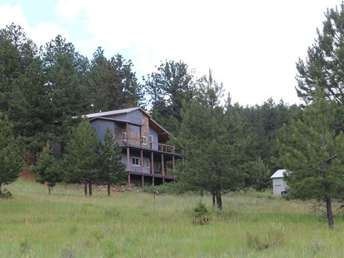 Senators Mining Claim : Westcliffe : Custer County : Colorado