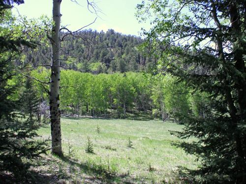 Lone Eagle Hideaway : Westcliffe : Custer County : Colorado