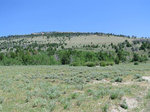 Wild Iris Getaway Lot 11 : Lander : Fremont County : Wyoming