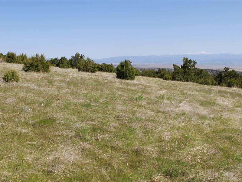 Vaughn View Ranch : Pueblo : Pueblo County : Colorado
