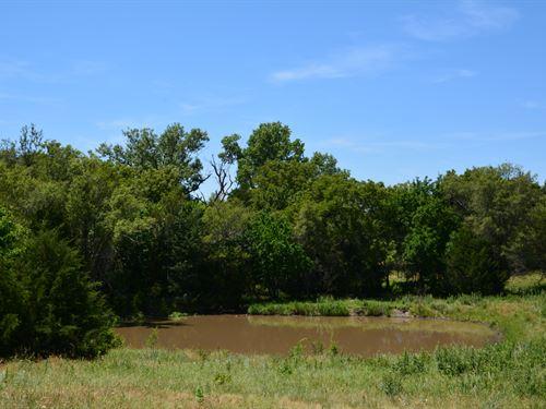 Central Ks Farm & Grass : Wells : Ottawa County : Kansas