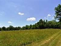104 Acres For Sale in The Ozarks : Doniphan : Ripley County : Missouri