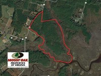 109 Acres of Hunting Land For Sale : Aylett : Mathews County : Virginia
