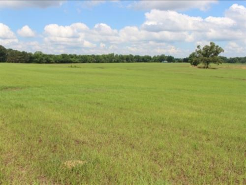 400 Acres With Home In Claiborne Co : Port Gibson : Claiborne County : Mississippi