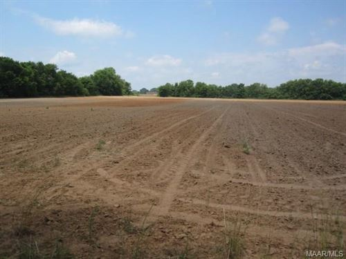 34+/- Acres In Autauga County : Deatsvill : Autauga County : Alabama