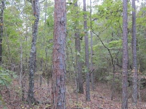 45+/- Acres Elmore County : Wetumpka : Elmore County : Alabama