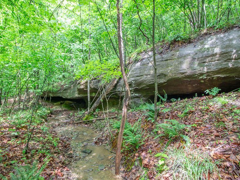 Dry Ridge Rd - 74 Acres : Patriot : Gallia County : Ohio