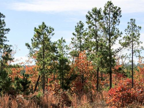 Beautiful Homestead Escape 35 : Wilburton : Latimer County : Oklahoma