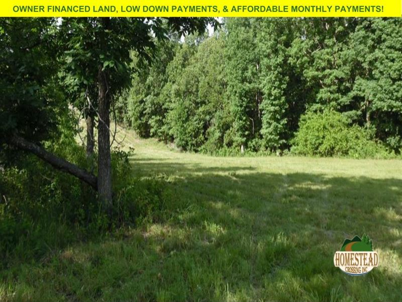 Build Your Ozark Home Here : Farm for Sale by Owner : Pomona : Howell  County : Missouri