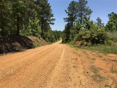 240 Acres Timber / Recreation Prope : West Point : Clay County : Mississippi