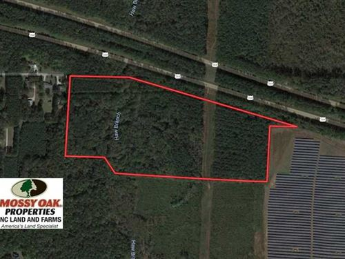 Under Contract, 40 Acres of Timbe : Bailey : Nash County : North Carolina