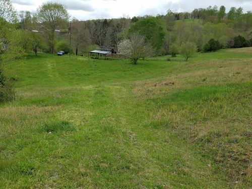 Gorgeous Mix Of Pasture And Woods : Washburn : Grainger County : Tennessee
