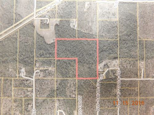 Secluded Land For Sale : Fountain : Calhoun County : Florida