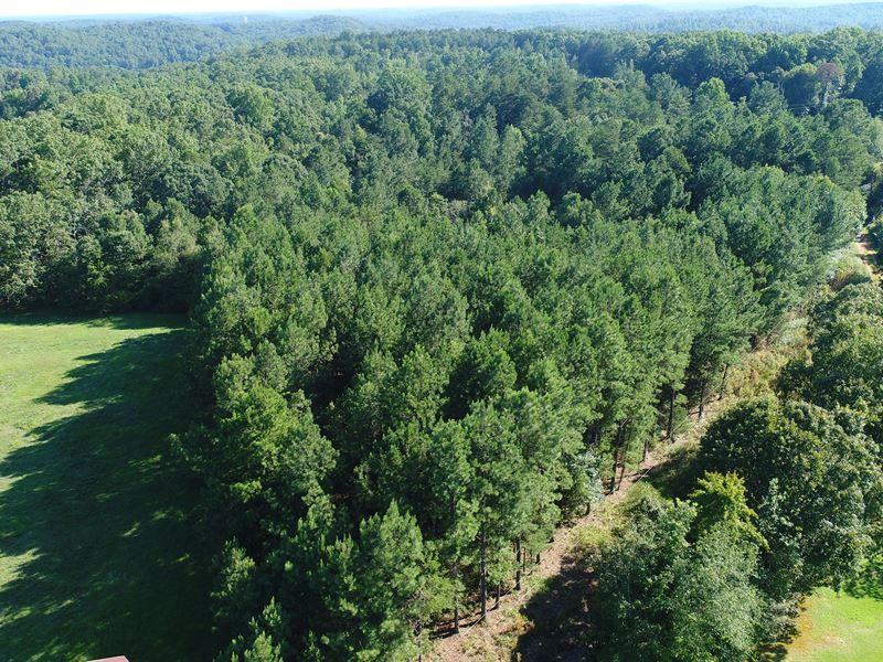 Country Living : Westminster : Oconee County : South Carolina