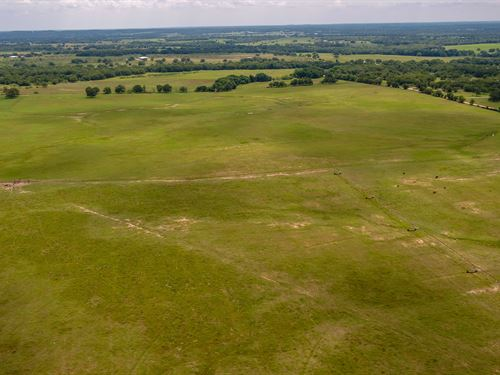 The Island Ranch, +/-467 Acres : Rockdale : Milam County : Texas