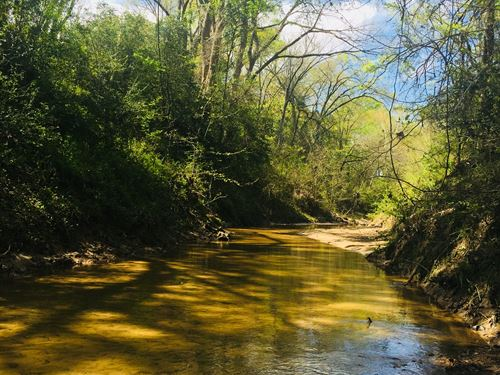 20.5 Acres With Live Creek : Gause : Milam County : Texas