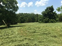 13 Acres in Webster County MO With : Marshfield : Webster County : Missouri