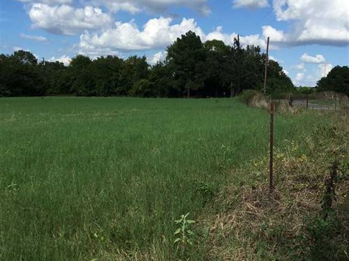 41 Acres of Mixed Timber And Pastu : Jacksonville : Cherokee County : Texas