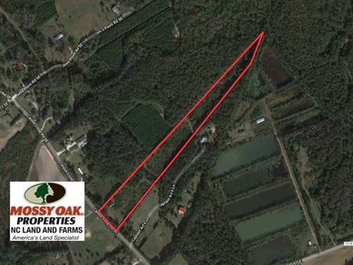 8 Acres of Residential And Hunting : Winnabow : Brunswick County : North Carolina