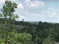 490 Acres In Winston County, Al : Haleyville : Winston County : Alabama