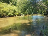 Tallapoosa River 42+/- Acres : Heflin : Cleburne County : Alabama