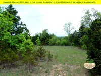 Untouched Land Between Two Lakes : Mammoth : Ozark County : Missouri