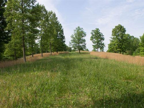 Beautiful Rolling Field Retreat 4 : Liberty : Casey County : Kentucky