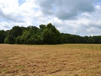 Collett 99 - Hunting And Homesite : Cecil : Montgomery County : Alabama