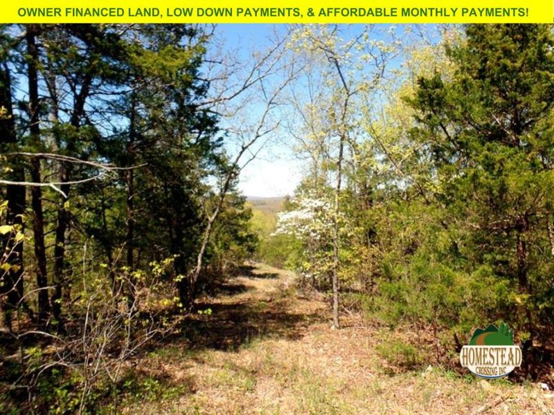 Off-Grid Parcel, Spectacular Views : Mammoth : Ozark County : Missouri