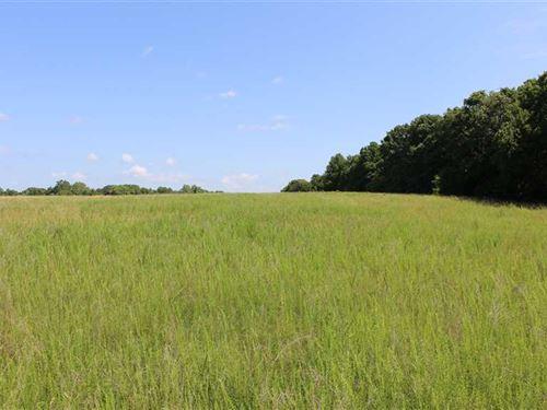 60 Acres Near Humansville, IN : Humansville : Cedar County : Missouri