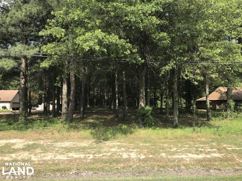 33 Acres Timberland, Residential : Brinkley : Monroe County : Arkansas