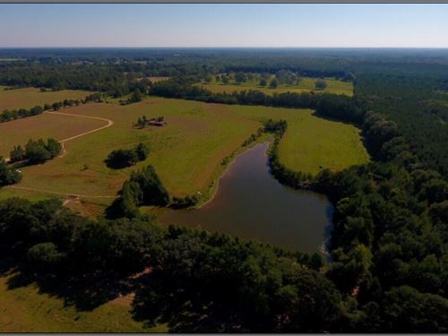 38.5 Acres In Neshoba County : Philadelphia : Neshoba County : Mississippi