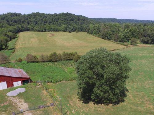50 Acre Farm In Metcalfe County, Ky : Edmonton : Metcalfe County : Kentucky