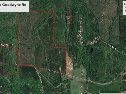 380.72 Acre Trevitt Tract : Forsyth : Monroe County : Georgia
