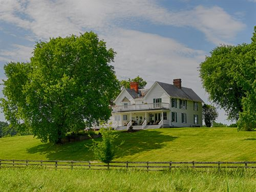 Beautiful Swanhilda : Arvonia : Buckingham County : Virginia