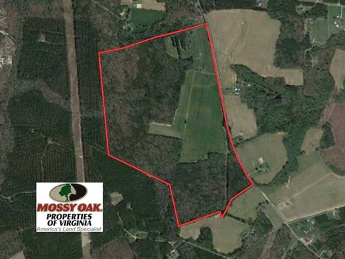 146 Acres of Farm And Hunting Land : Petersburg : Dinwiddie County : Virginia