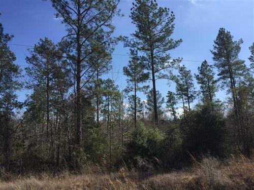 Glades Tract, Jackson Parish, 33 : Eros : Jackson Parish : Louisiana
