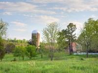 Boxwood Farm : Dillwyn : Buckingham County : Virginia